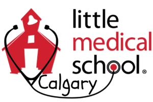 Little Medical School Logo